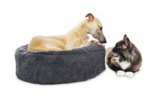 ergonomisk hundbädd