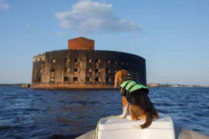 hundflytväst båt